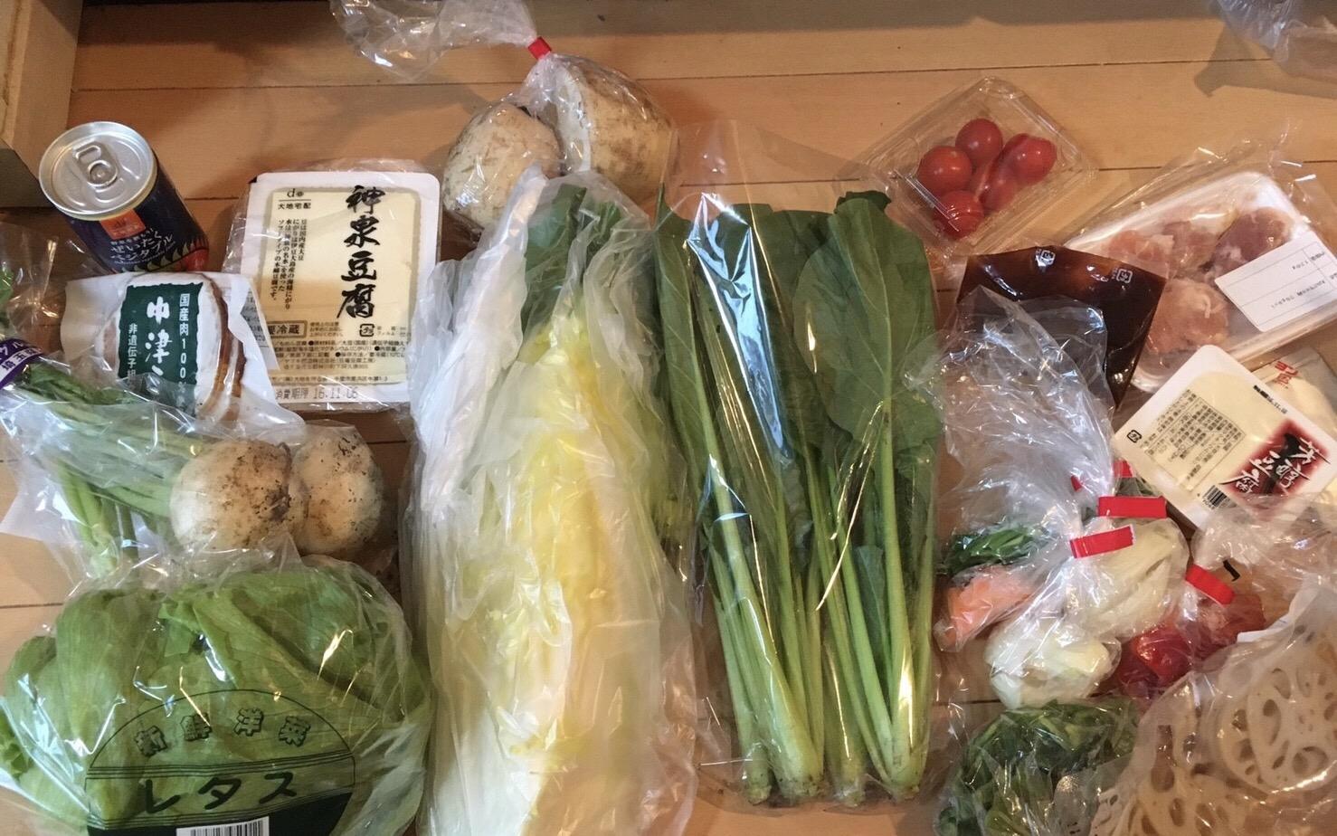 野菜が定期的に届くサービス大地宅配を頼んでみた。