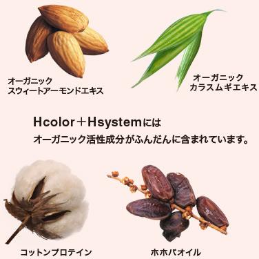 hSystemFig02